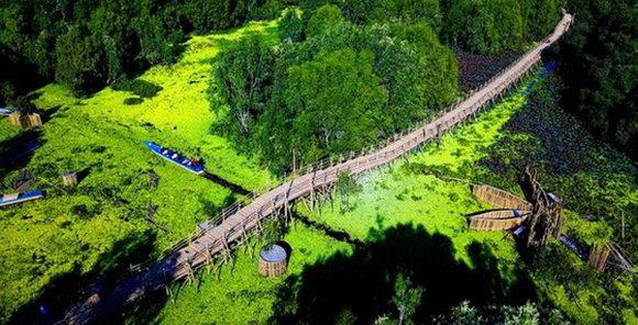 越南有哪些獨特的橋樑?茶師白千層林的竹橋